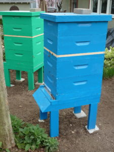 The blue hive and the green hive